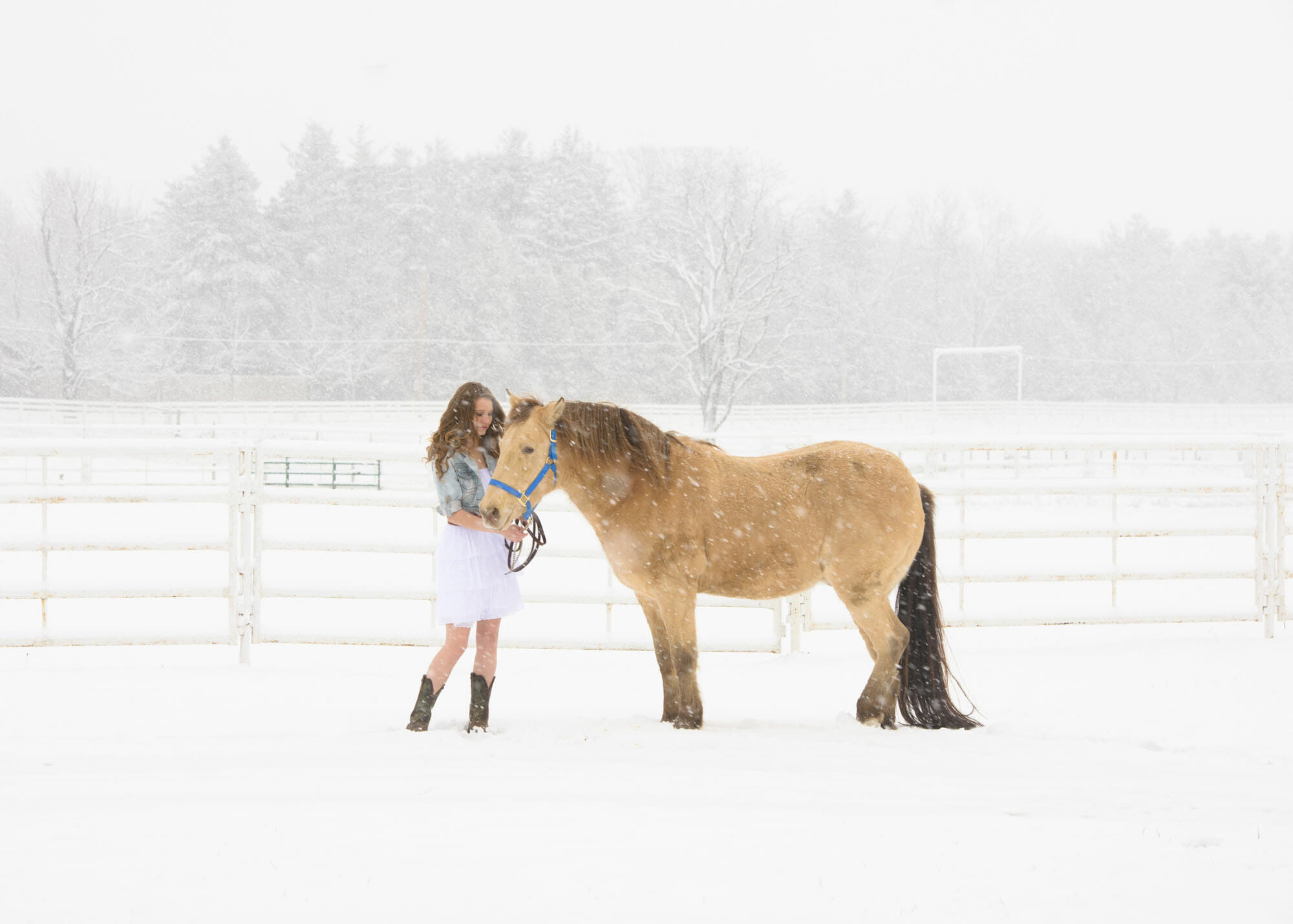 senior picture girl horse in snow
